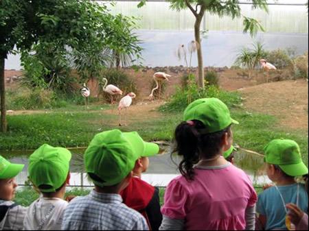 Visita ao Parque biológico de Gaia